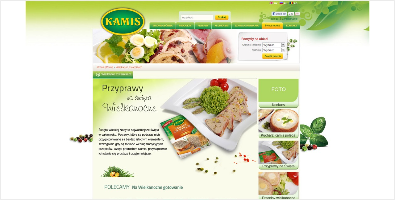 portfolio_kamis_strona