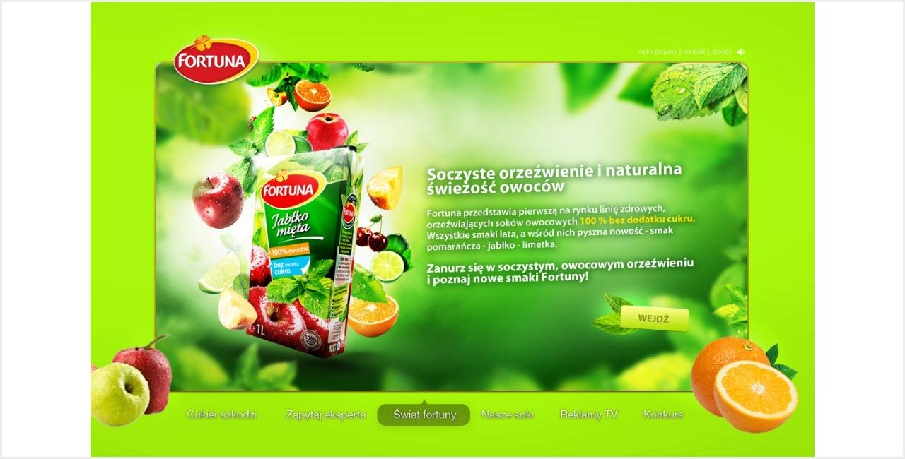 portfolio_fortuna_informacje